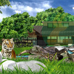 Zoo Exhibit Consultant